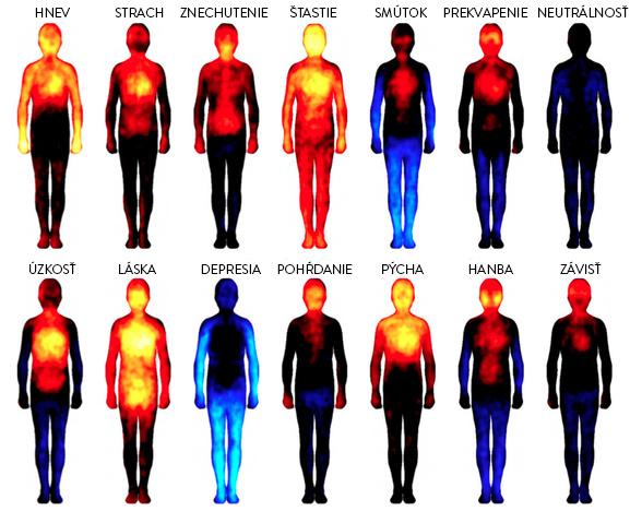 14 typov emócii