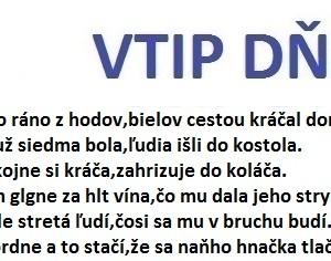 VTIP DŇA