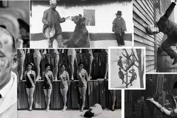 Liečenie bolesti chrbta za pomoci medveďa, Rumunsko, 1946