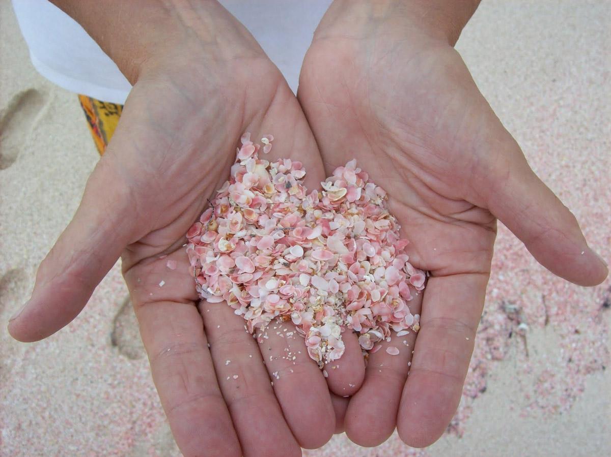 2.-Pink-Beach-Bahamas-2