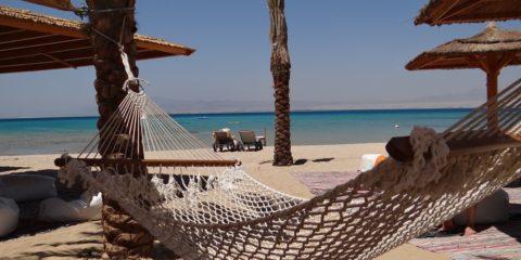 beach-641548_960_720