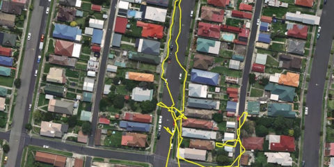 gps-tracker-cat-movement-map-lithgow-central-tablelands-local-land-services-1