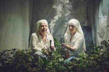 marihuana+mnisky