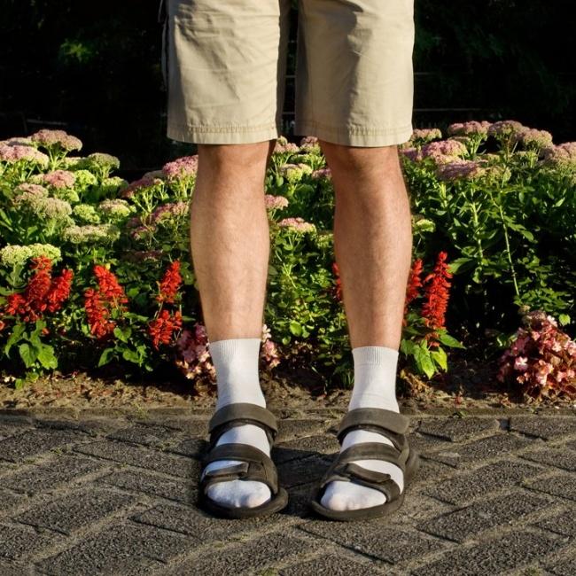 7705860-socks-sandals-1479266048-650-e5e3a6220e-1479480968