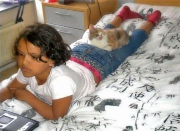 girl-saves-disfigured-cat-istanbul-08