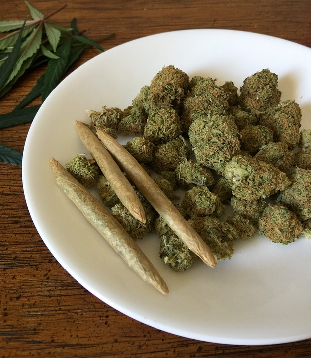 cannabis-1418332_960_720