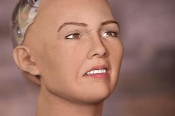 robotik2-600x350