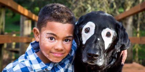 boy-dog-skin-disorder-vitiligo-carter-oregon