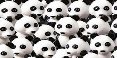 panda-pes