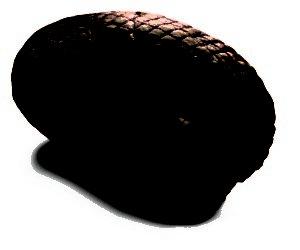 gazdovska-rolka