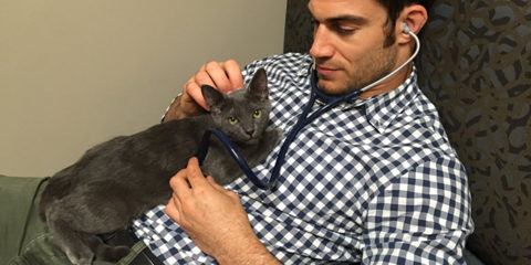 just-cats-vet-clinic-hires-cat-cuddler-4-5927e7de81148__700