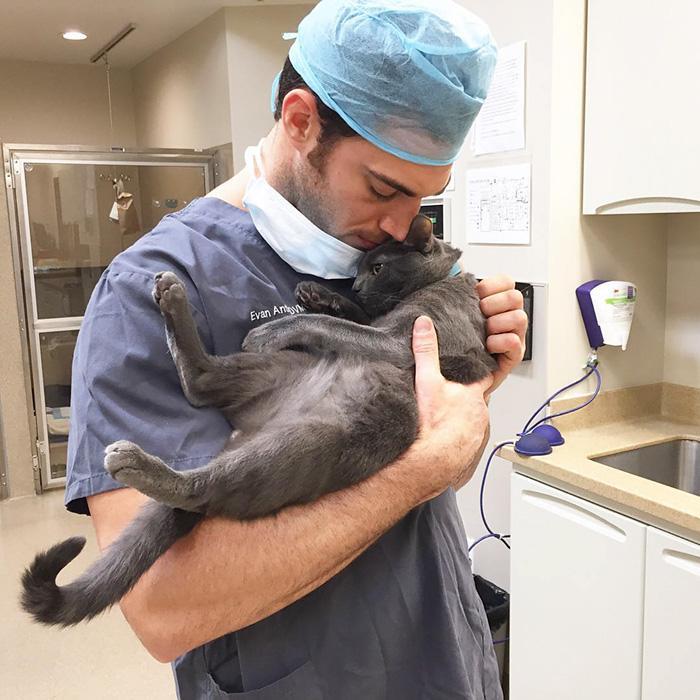 just-cats-vet-clinic-hires-cat-cuddler-5-5927e7e0871b7__700