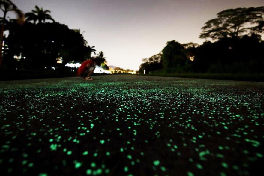 glow-in-the-dark-rail-corridor-singapore-6