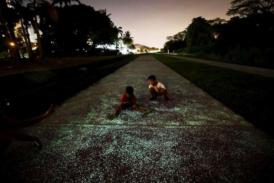 glow-in-the-dark-rail-corridor-singapore-8