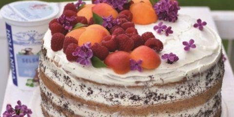 makova-torta1