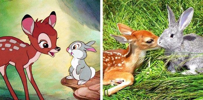 bambi-a-maly-zajacik