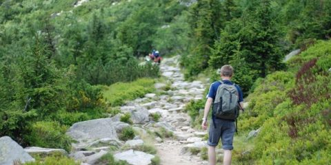 Mountain Hiking The Path Hiking Walking Mountains