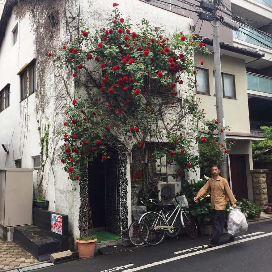 one-photographer-took-over-100-images-of-kyotos-small-yet-utterly-delightful-buildings-59bb9121c1f1c__880-1