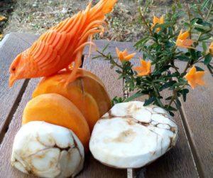 15-alternative-halloween-pumpkins-carved-by-master-angel-boraliev-59ed98df44179__880