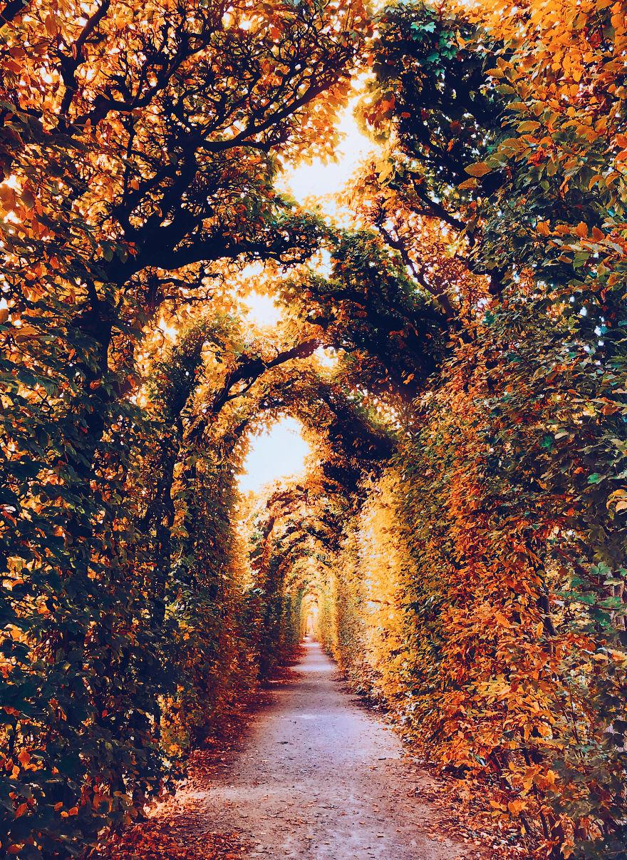 autumn0056-59e7b3ae98d0e__880