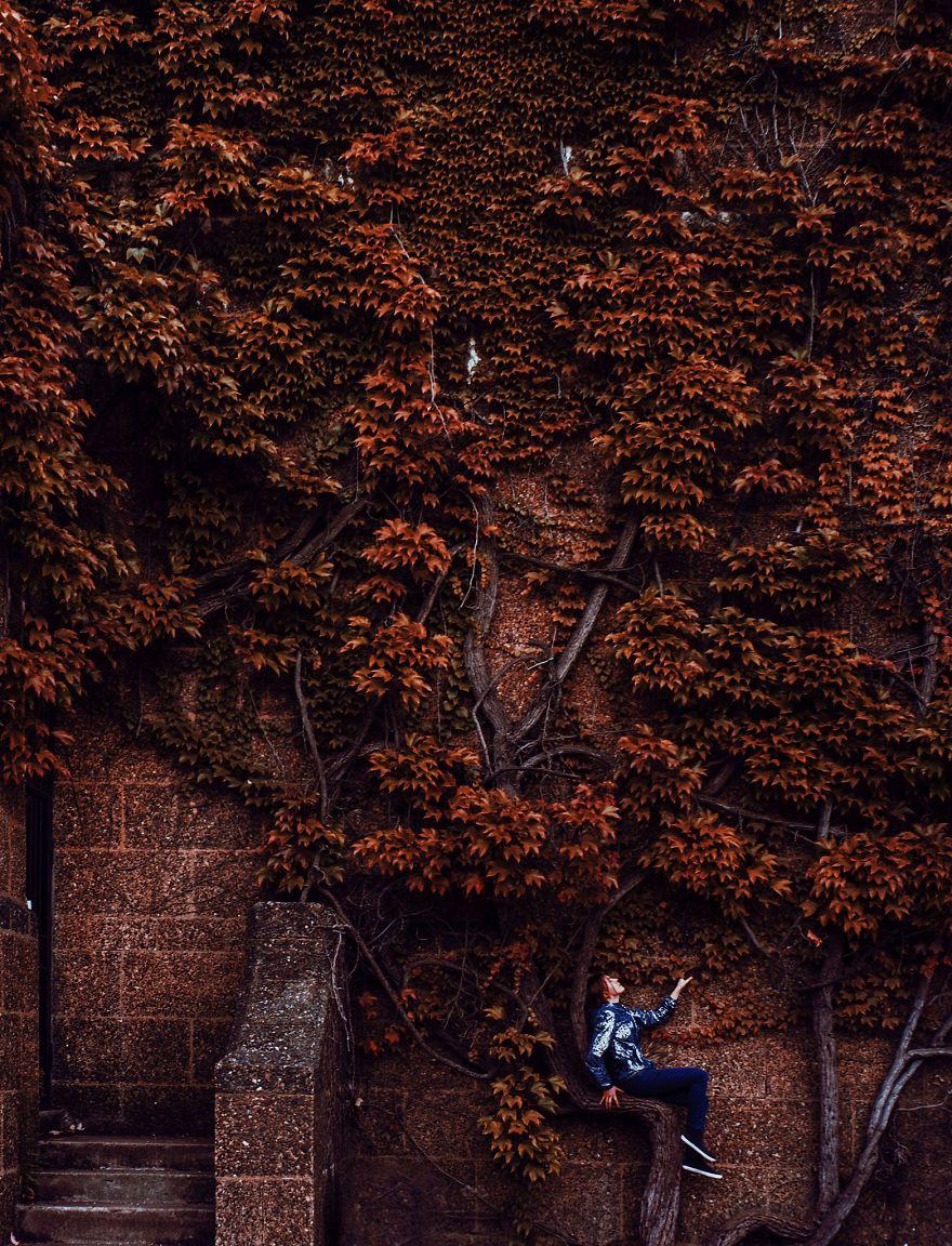 autumn0067-59e7b7aa0114f__880