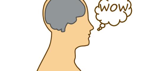 brain-154297_960_720