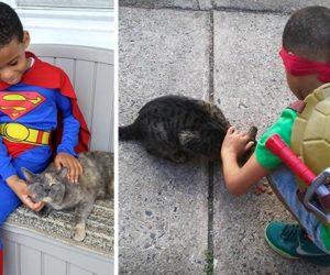 little-boy-superhero-costumes-street-cats-kolony-kats-coverimage2