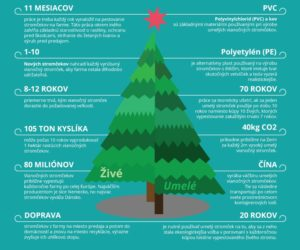 zivot-vianocnych-stromcekov-infografika-shopalike