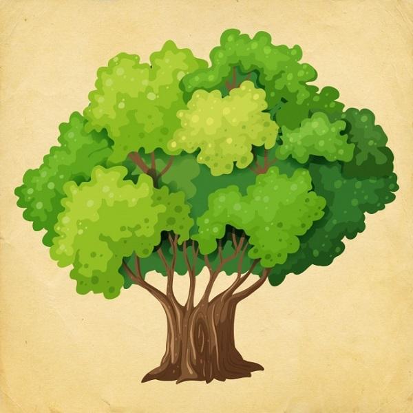 strom6