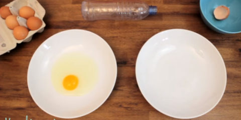 vajíčka