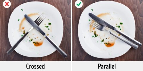 jedlo 15 po