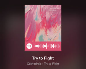 cathedrals-spotify-code